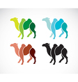 Image of an camel design vector