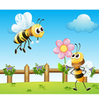 Two bees inside the wooden fence vector