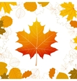 Autumn leaves design elements plus eps10 vector