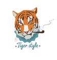 Smoking tiger portret vector