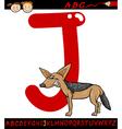 Letter j for jackal cartoon vector