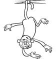Monkey on branch coloring page vector
