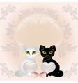 Elegant cats vector