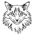 Contour cat vector
