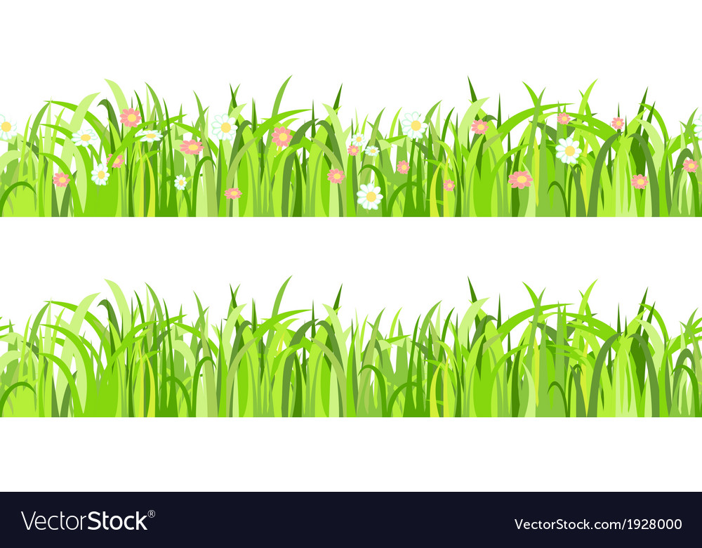 Two seamless patterns with grass and flowers vector | Price: 1 Credit (USD $1)