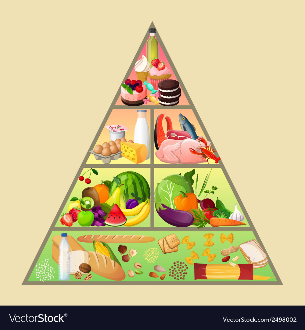 Food pyramid concept vector