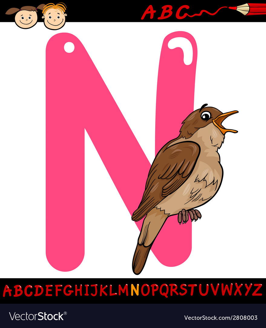 Letter n for nightingale cartoon vector | Price: 1 Credit (USD $1)