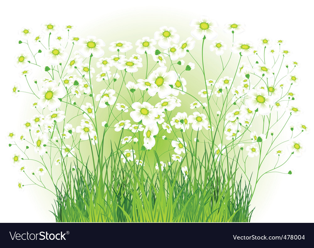 Green bush with white flowers vector | Price: 1 Credit (USD $1)
