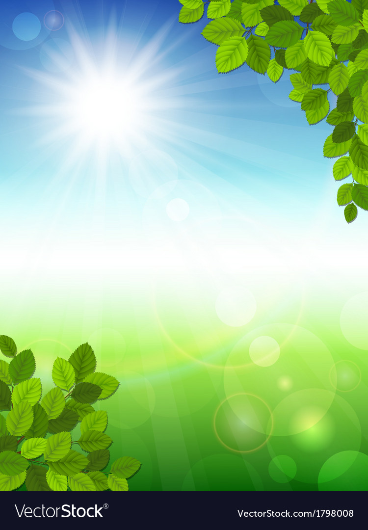Summer background with green leaves vector | Price: 1 Credit (USD $1)