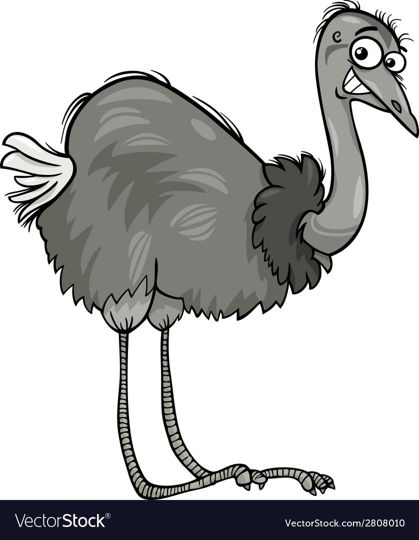 Nandu ostrich bird cartoon vector | Price: 1 Credit (USD $1)