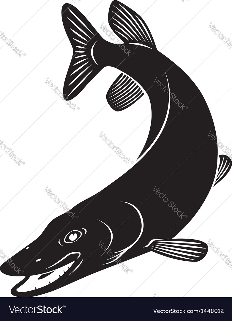 Pike vector | Price: 1 Credit (USD $1)