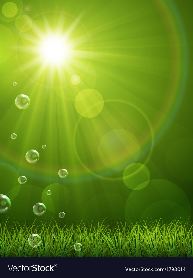 Summer green background vector | Price: 1 Credit (USD $1)