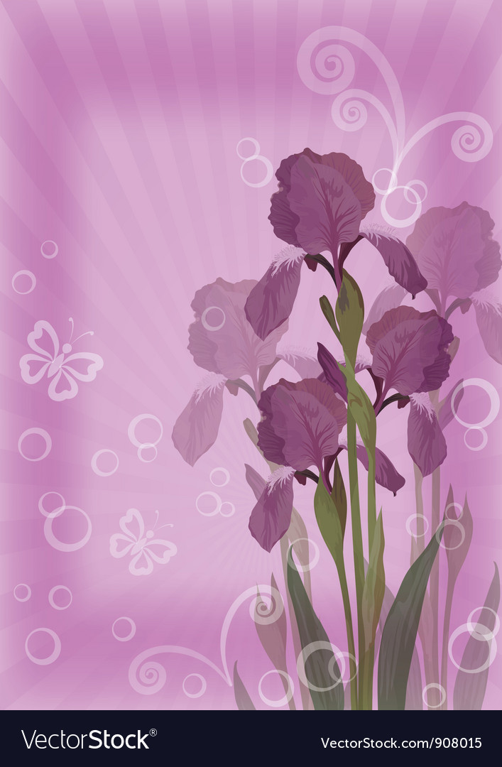 Flower background for greetings card vector | Price: 1 Credit (USD $1)