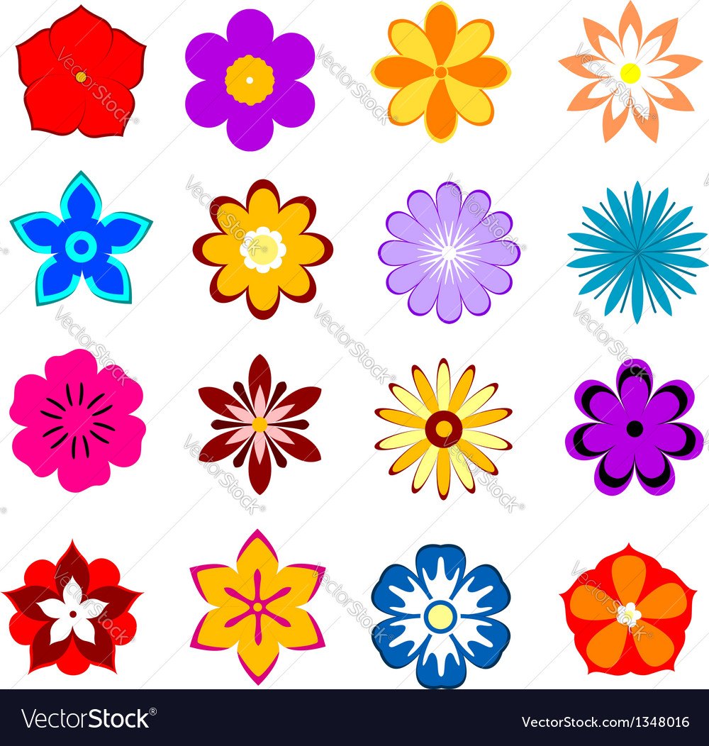 Set of flower blossoms and petals vector | Price: 1 Credit (USD $1)