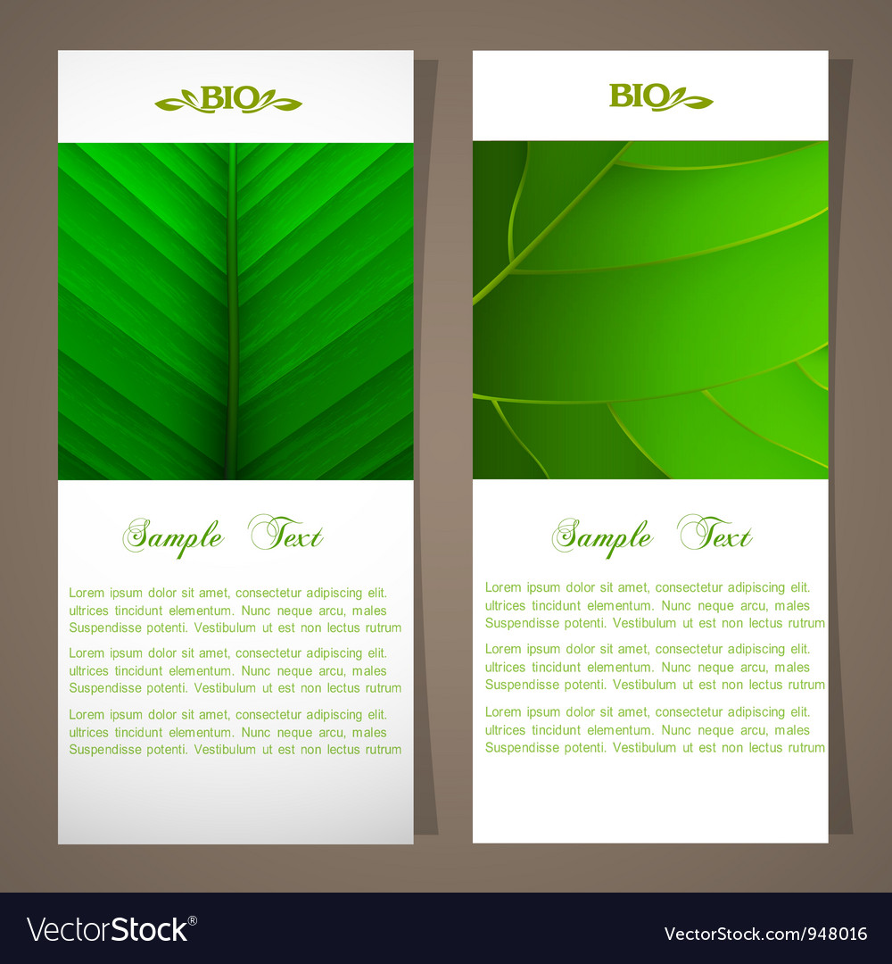 Two bio banners vector | Price: 1 Credit (USD $1)