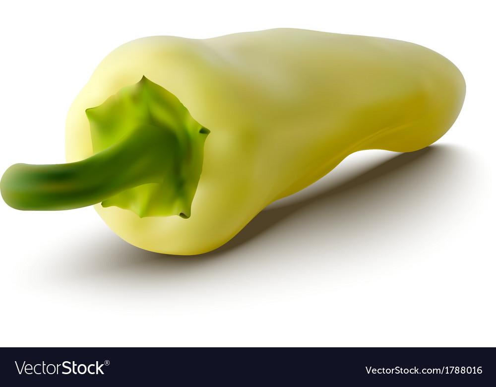 Yellow pepper vector | Price: 1 Credit (USD $1)