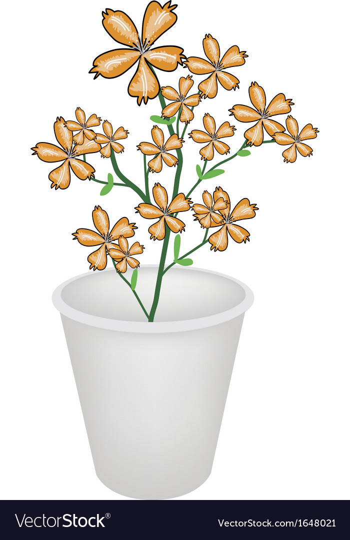 Lovely orange cosmos flowers in a flowerpot vector | Price: 1 Credit (USD $1)