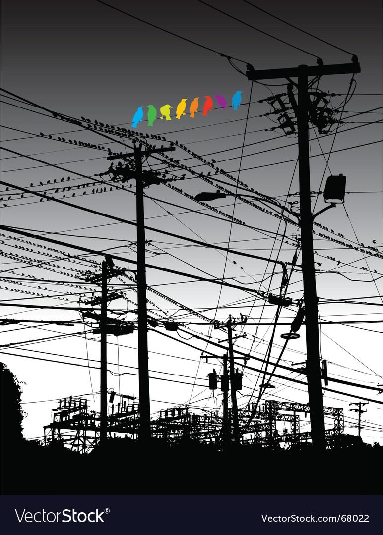 Electricity birds vector | Price: 1 Credit (USD $1)