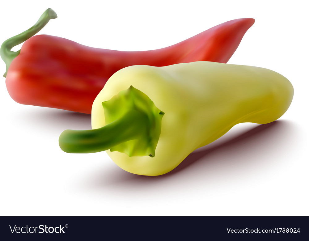 Red and yellow peppers vector   Price: 1 Credit (USD $1)