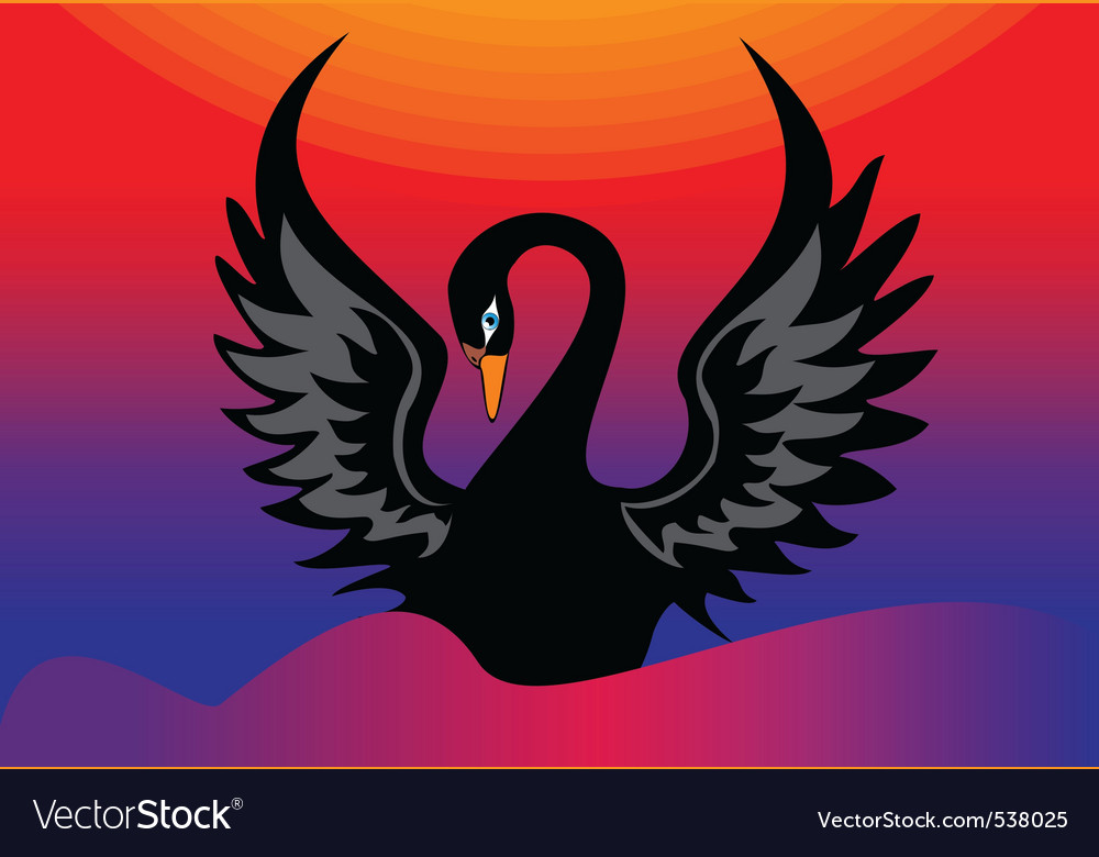 Black swan vector | Price: 1 Credit (USD $1)