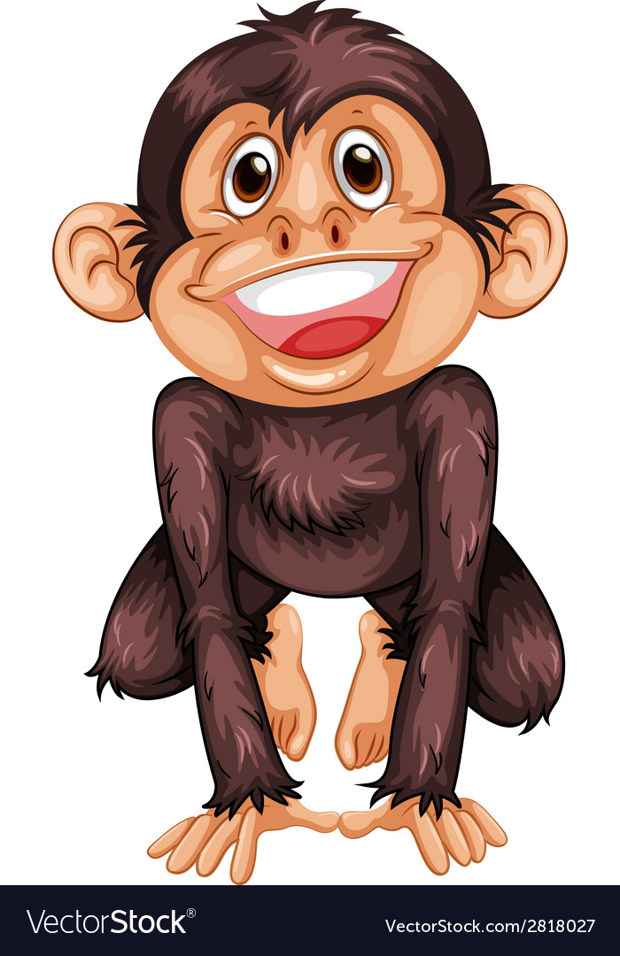 Chimpanzee vector | Price: 1 Credit (USD $1)