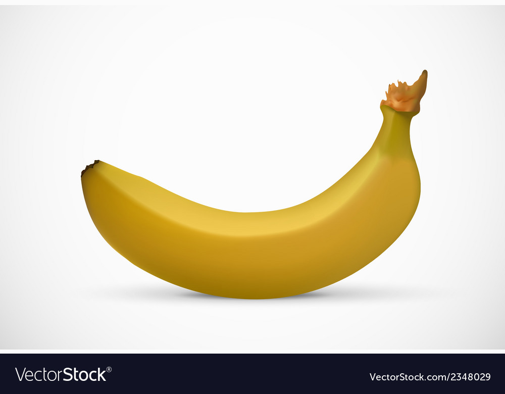 Banana isolated on white background vector | Price: 1 Credit (USD $1)