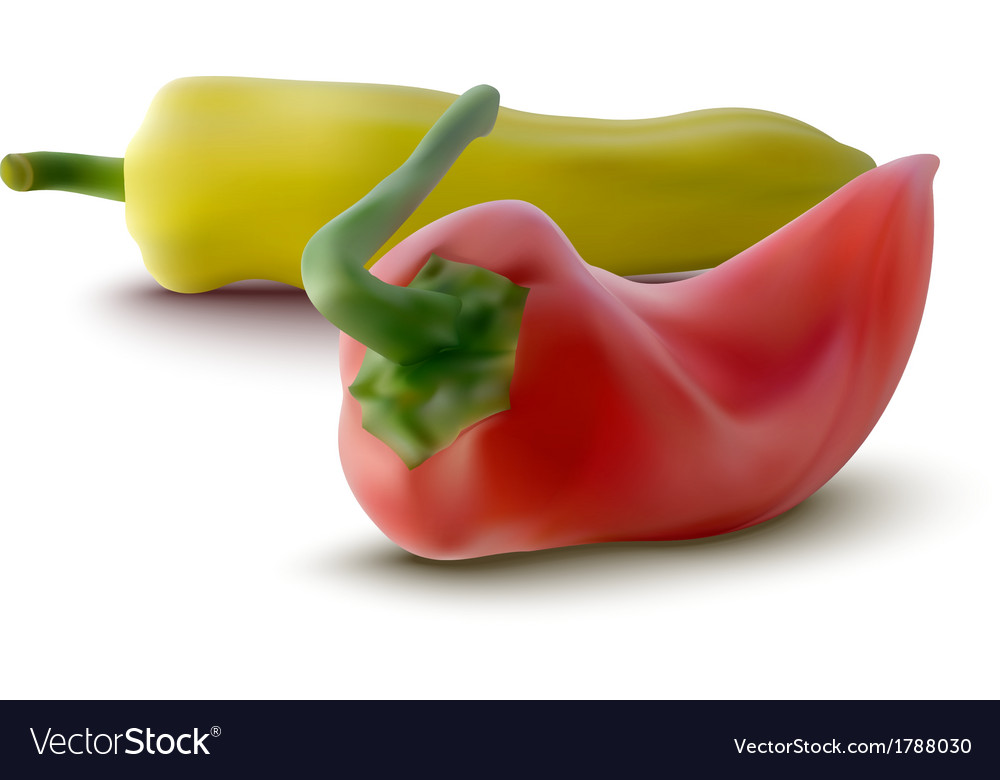 Red and yellow peppers vector | Price: 1 Credit (USD $1)