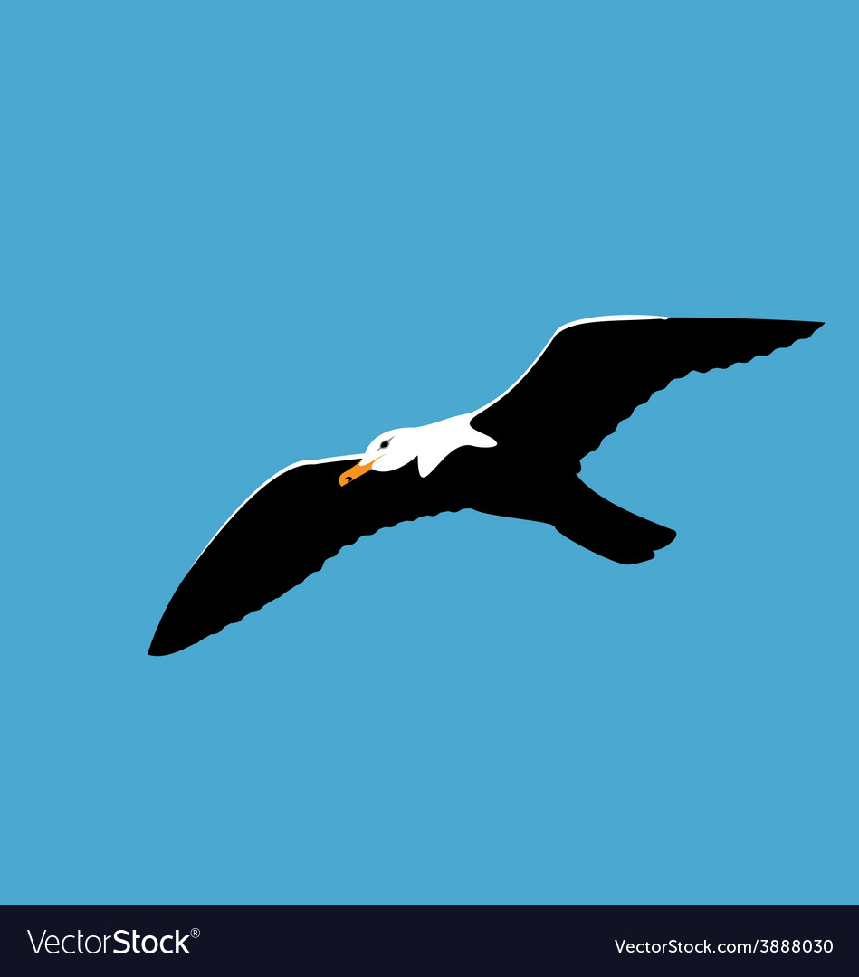 Soaring seagull in blue sky seabird isolated on vector | Price: 1 Credit (USD $1)