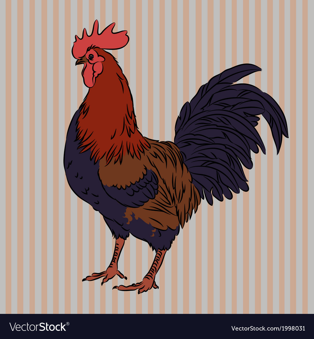 Realistic gorgeous rooster side view vector | Price: 1 Credit (USD $1)