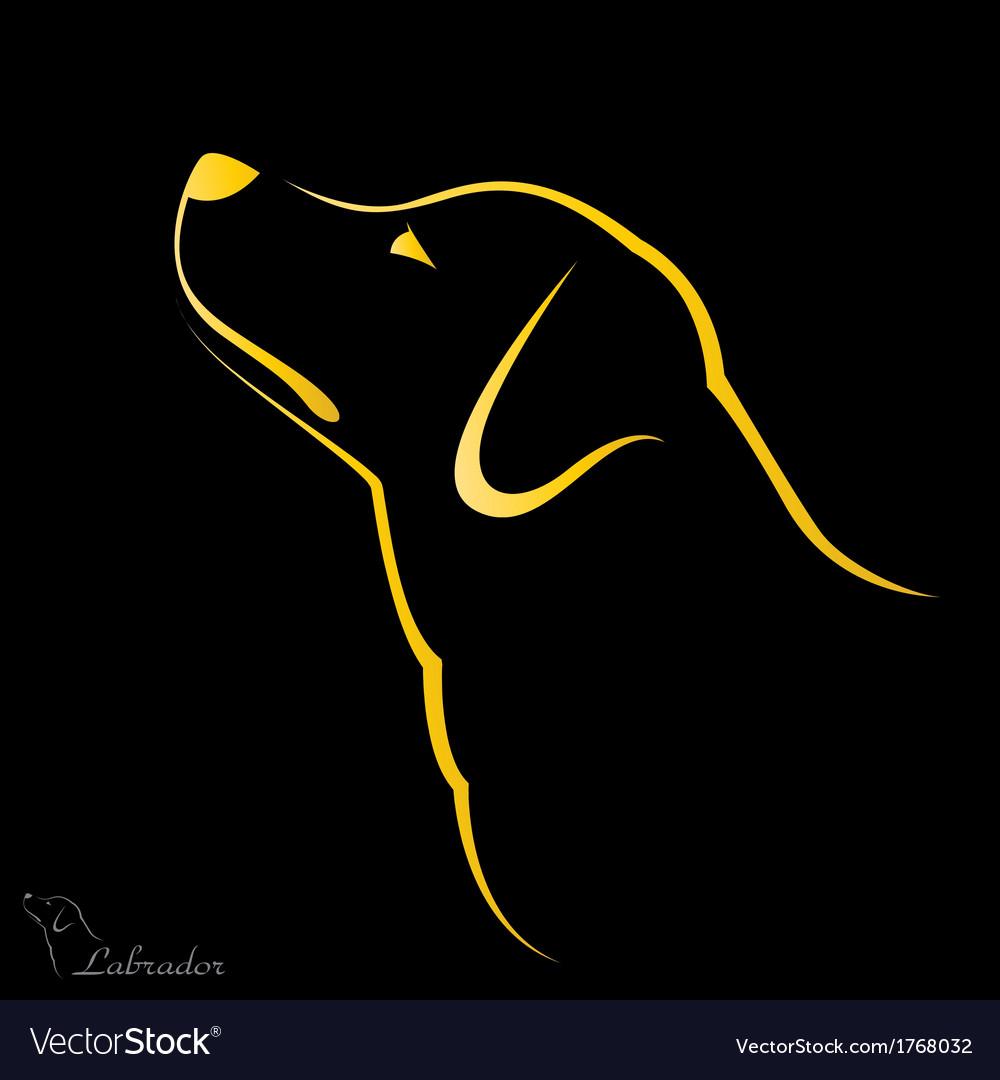 Labrador vector