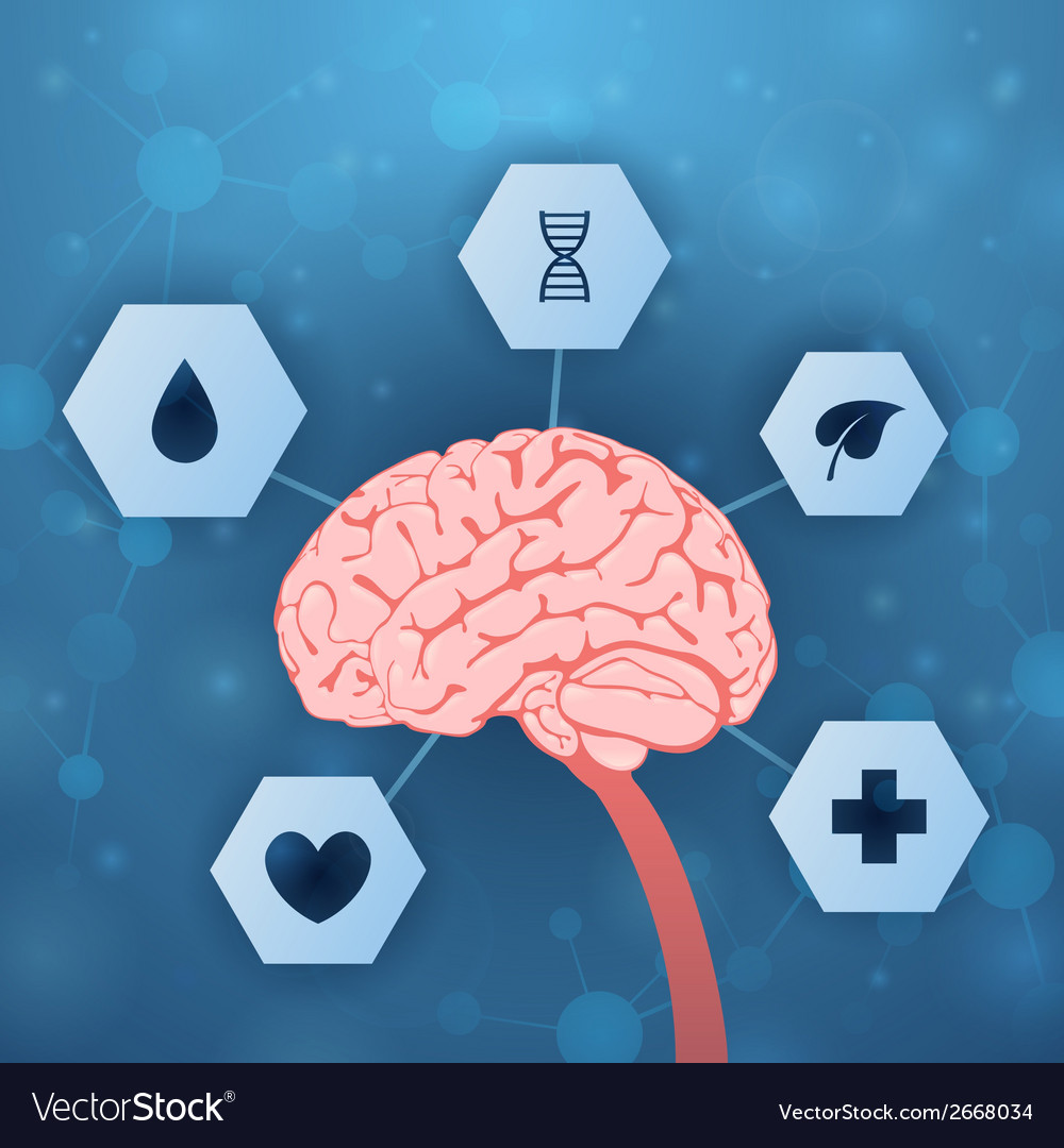 Brain and medical assistance vector | Price: 1 Credit (USD $1)