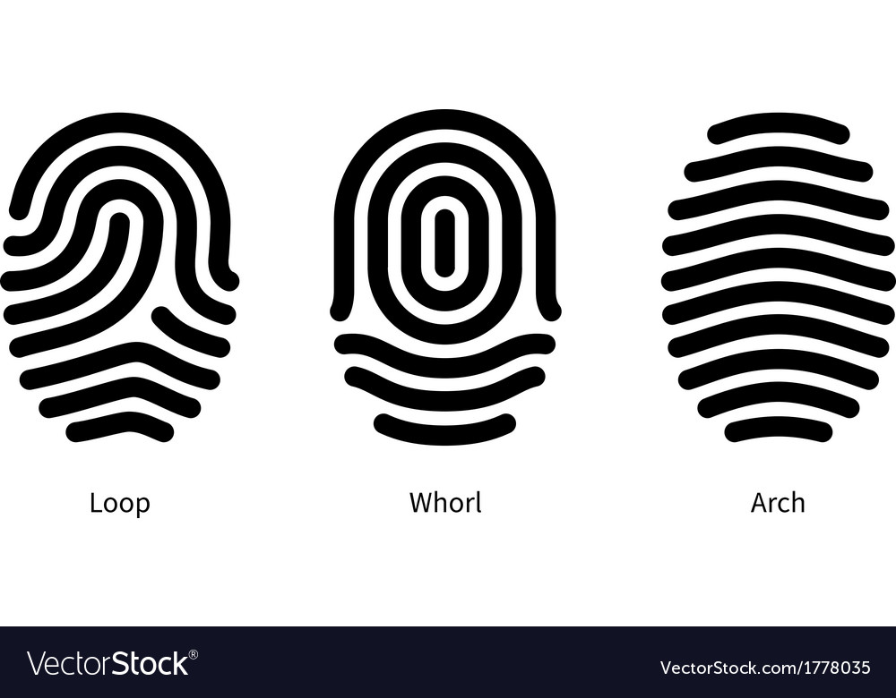 Fingerprint id types on white background vector | Price: 1 Credit (USD $1)
