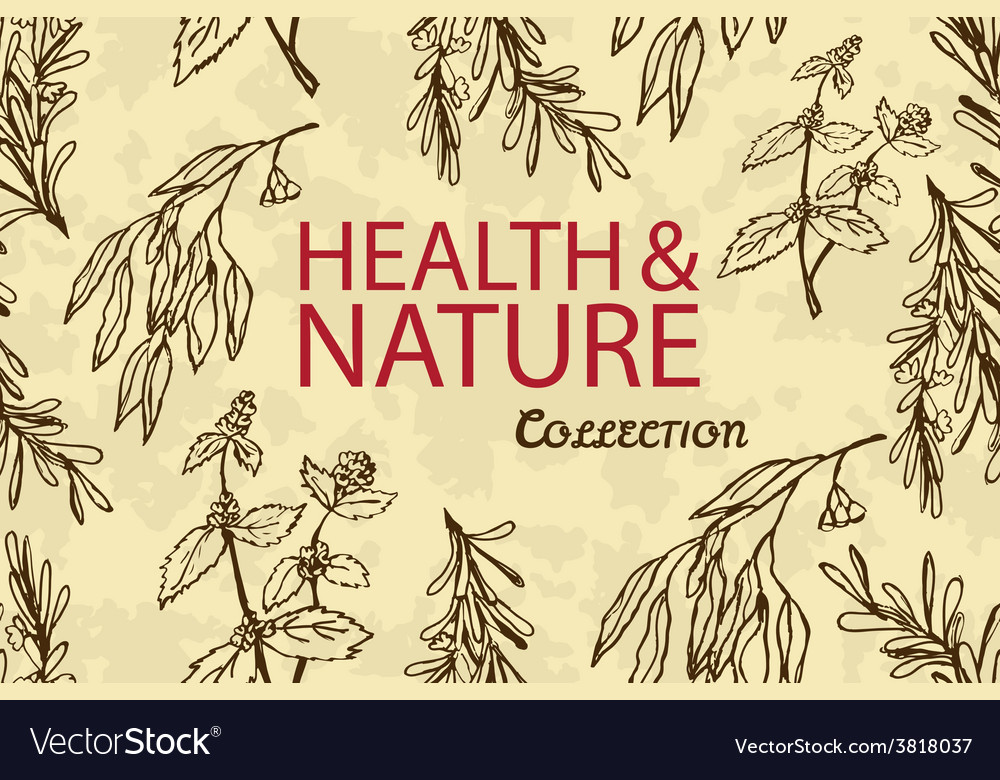 Handdrawn - health and nature vector | Price: 1 Credit (USD $1)