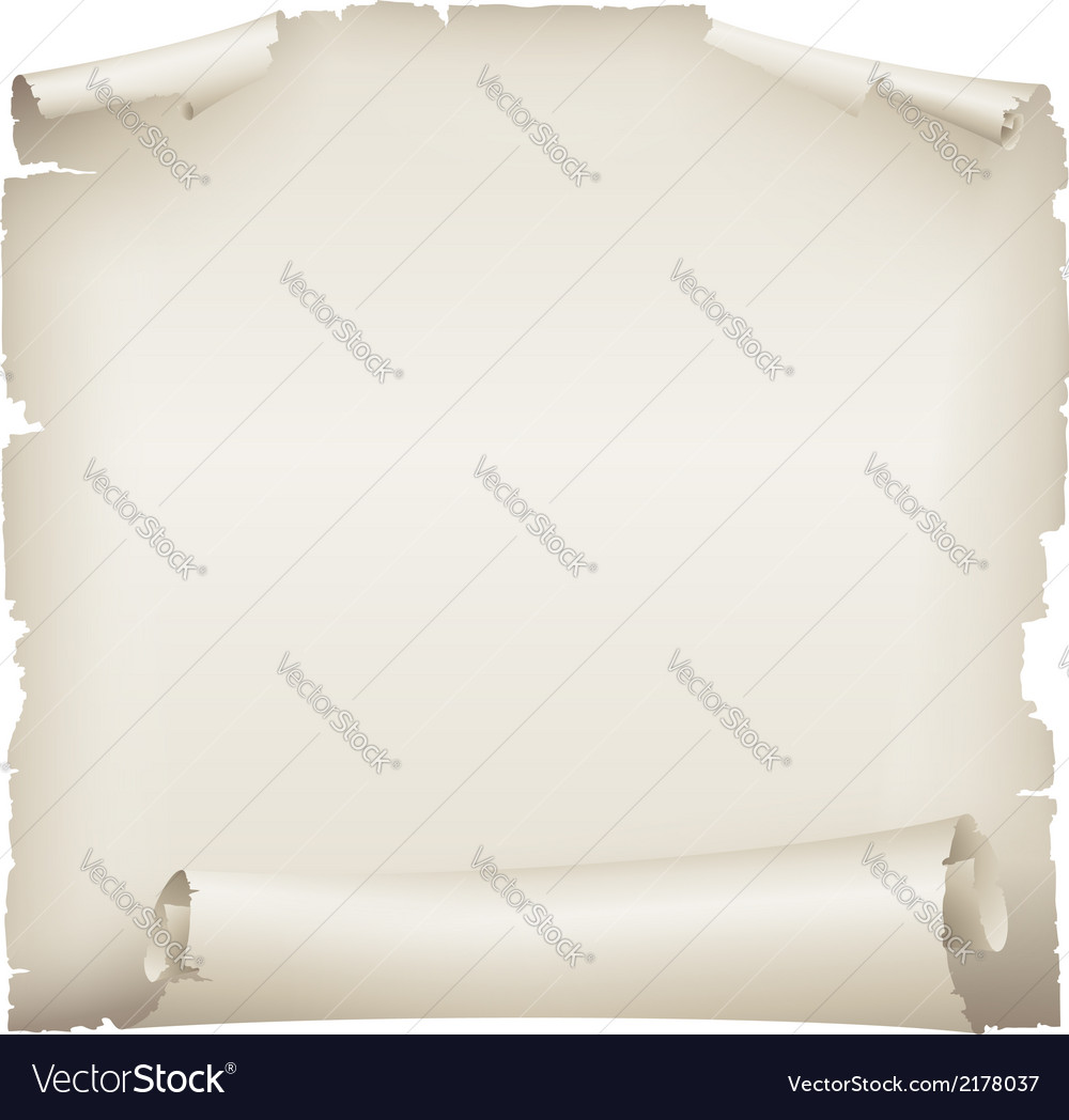 Old paper scroll banner vector