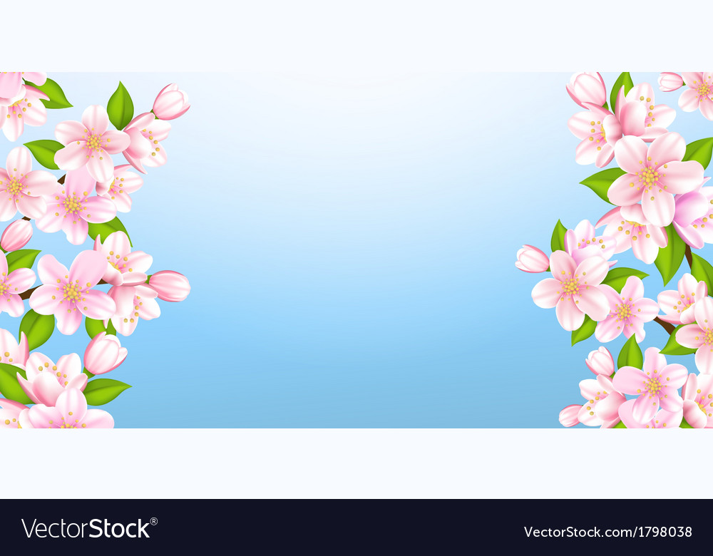 Beautiful branches of sakura vector | Price: 1 Credit (USD $1)