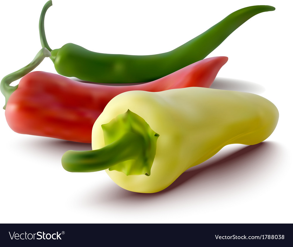 Red green and yellow peppers vector | Price: 1 Credit (USD $1)