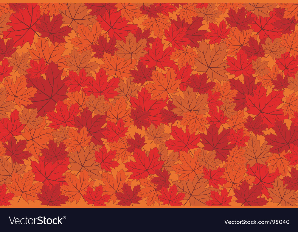 Red maple autumn leaves background vector | Price: 1 Credit (USD $1)