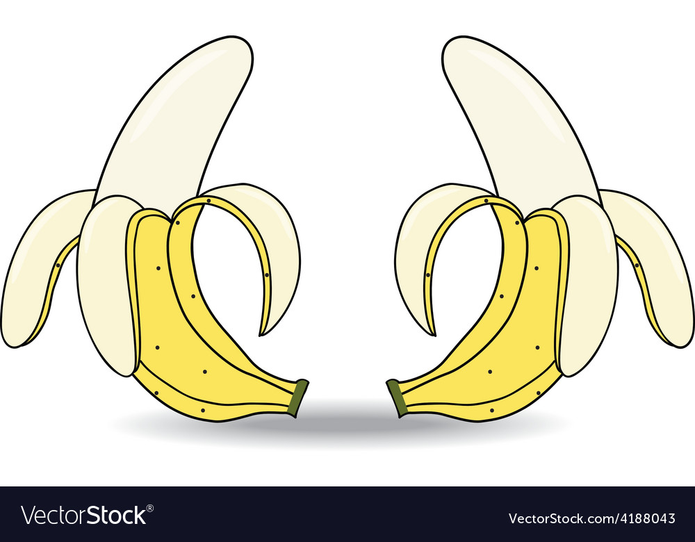 Banana on white background vector | Price: 1 Credit (USD $1)