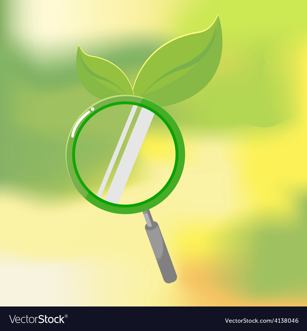 Organic nature lens leaf search vector | Price: 1 Credit (USD $1)