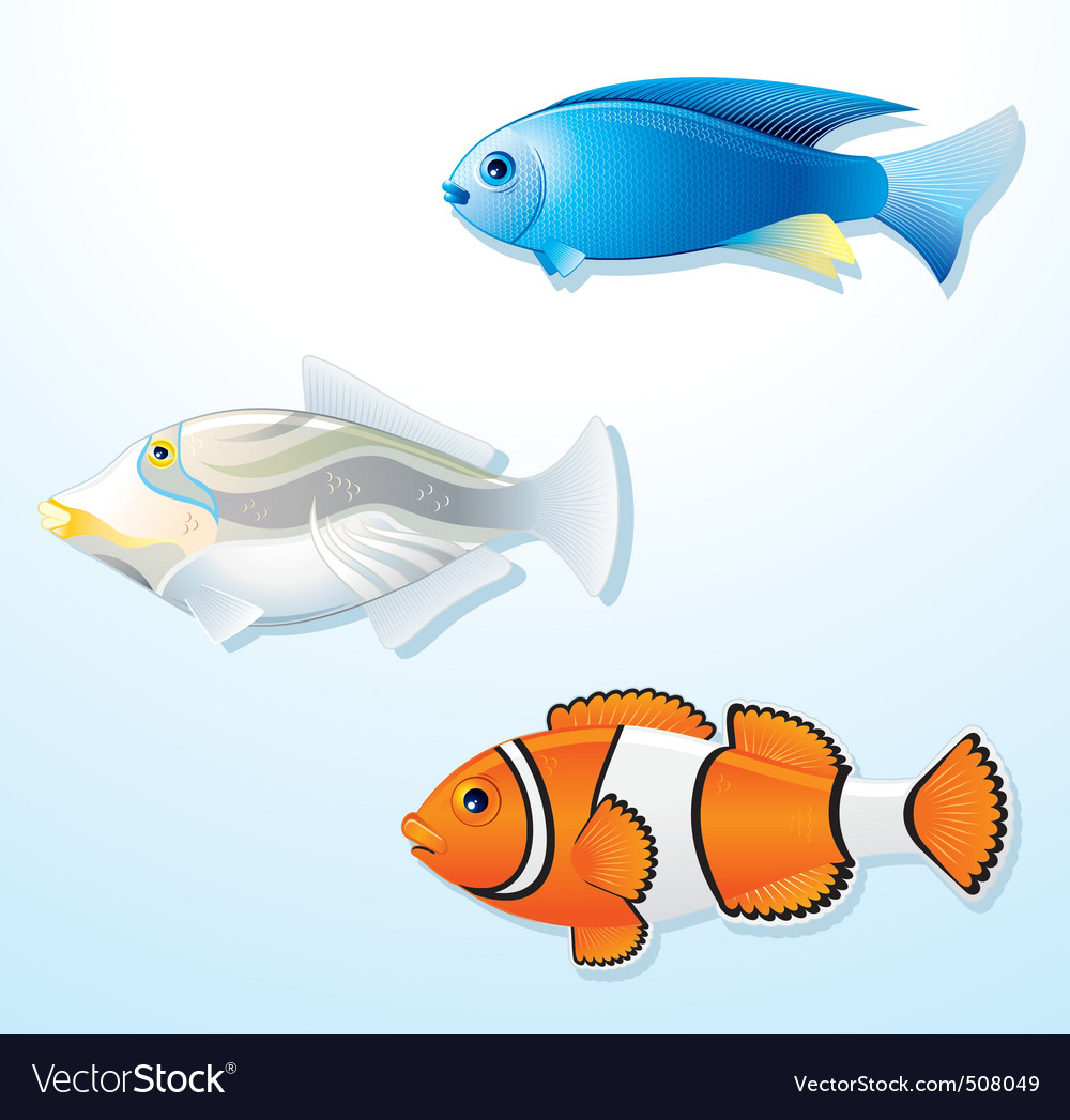 Detailed tropical fishes vector | Price: 1 Credit (USD $1)
