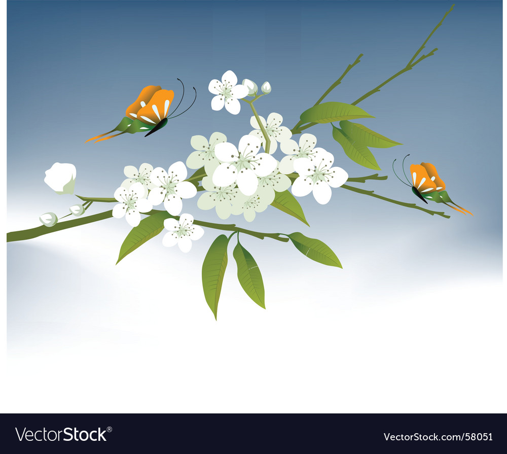 Cool spring vector | Price: 1 Credit (USD $1)