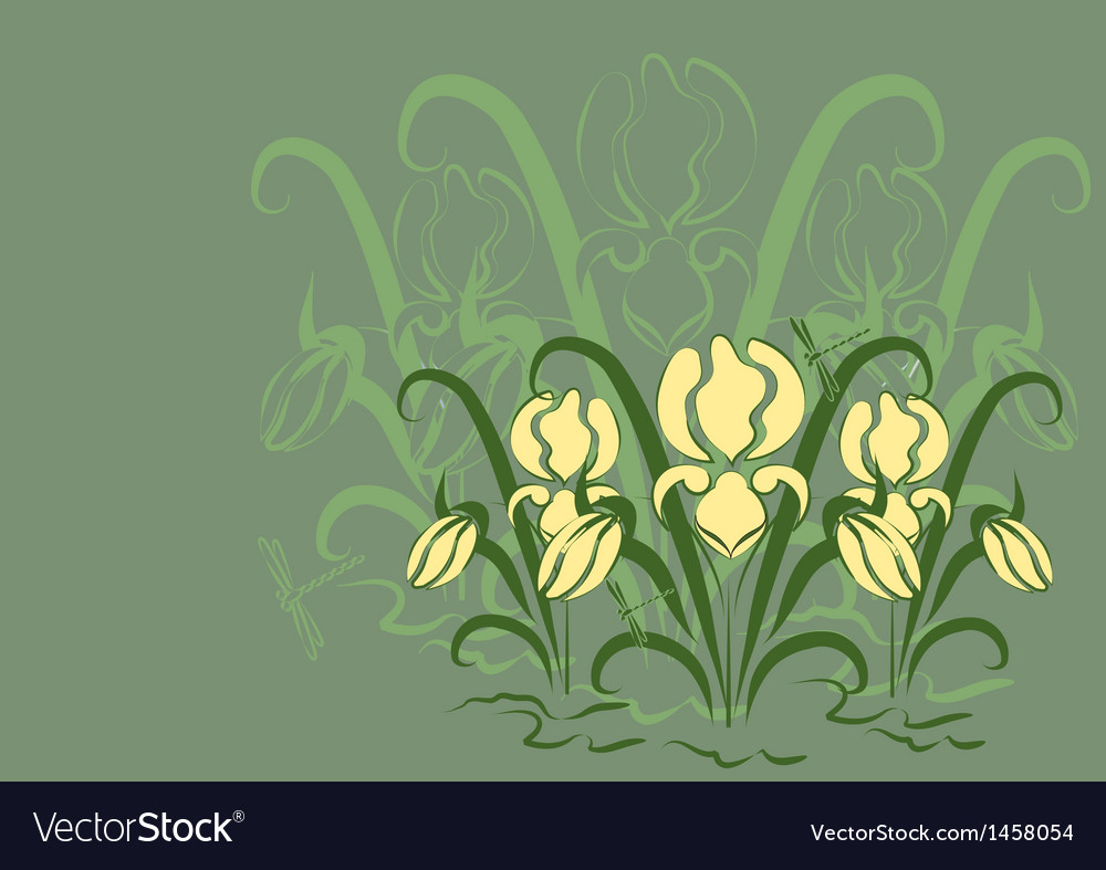 Green background with irises vector | Price: 1 Credit (USD $1)