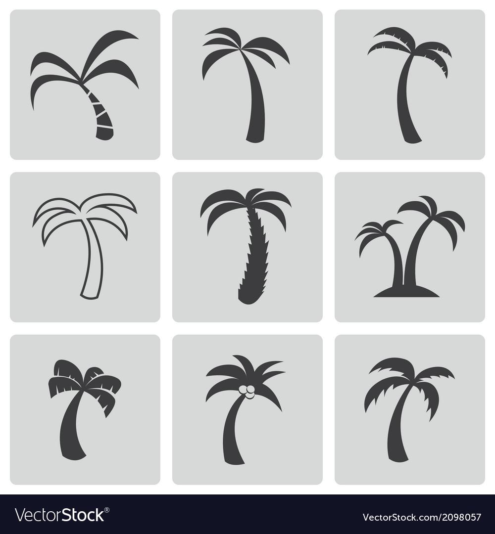 Black palm icons set vector | Price: 1 Credit (USD $1)