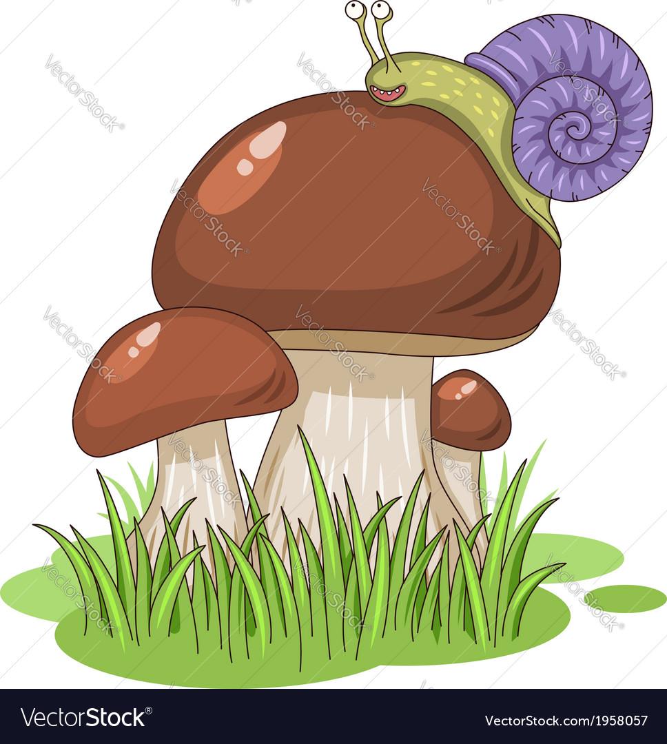 Cartoon mushrooms vector | Price: 1 Credit (USD $1)