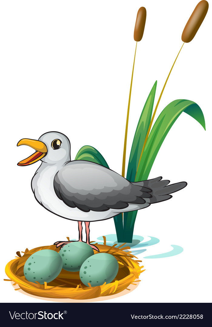 A bird beside the nest with eggs vector | Price: 1 Credit (USD $1)