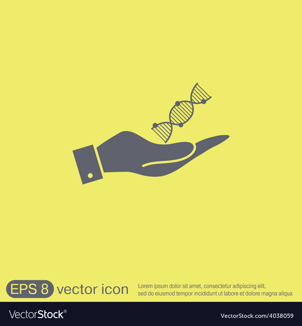 Hand holding a dna helix medical research vector | Price: 1 Credit (USD $1)