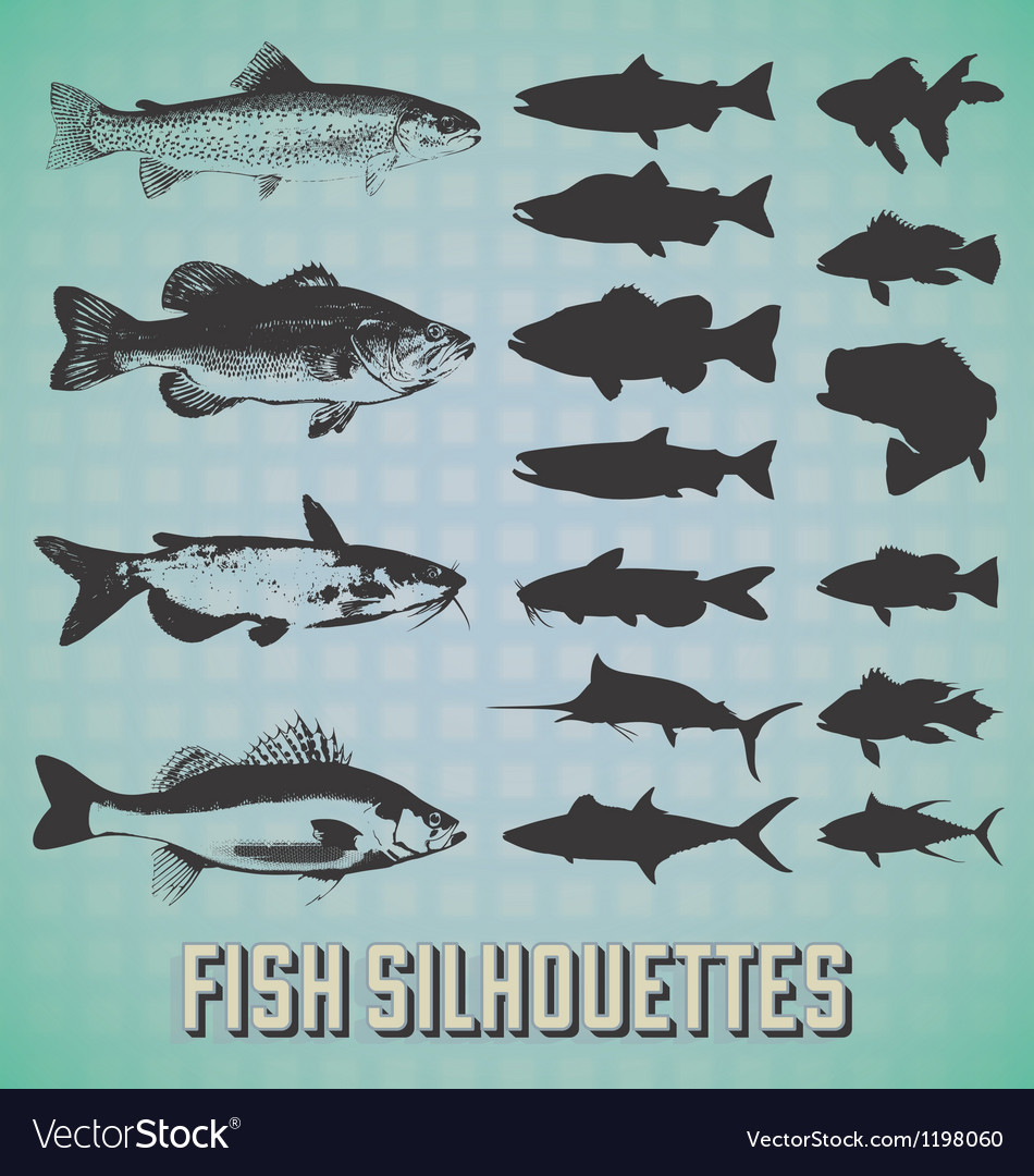 Fish silhouettes vector | Price: 3 Credit (USD $3)