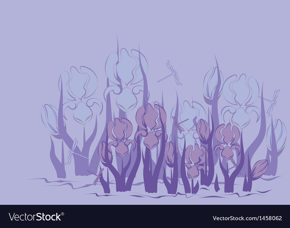 Lilac background with iris vector | Price: 1 Credit (USD $1)