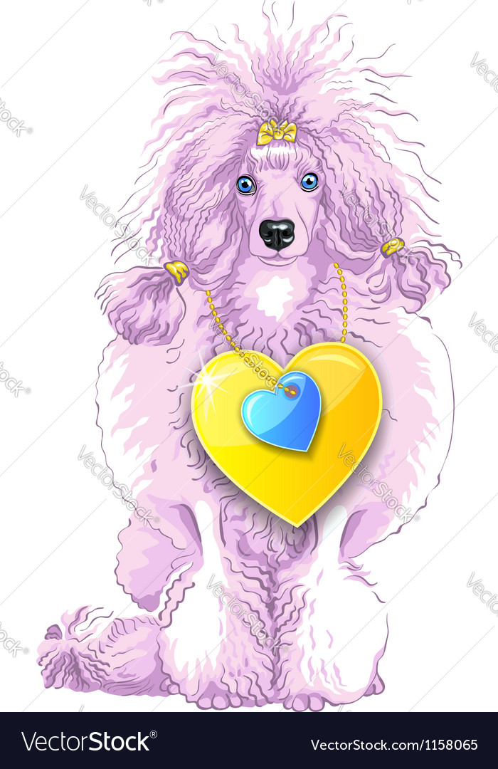 Pink poodle dog with gold heart vector | Price: 1 Credit (USD $1)