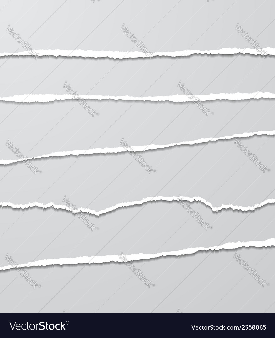 Torn paper set vector | Price: 1 Credit (USD $1)